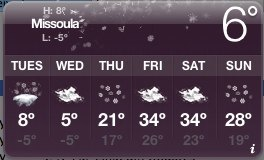 weather-nov-23-2010.jpg