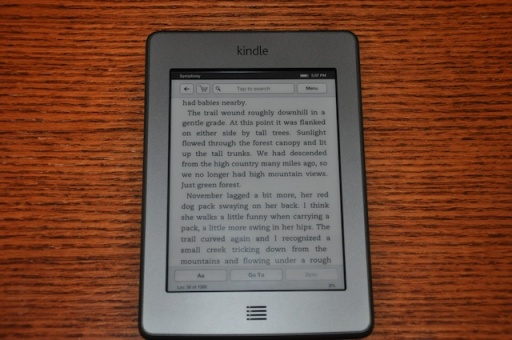 my draft on a Kindle