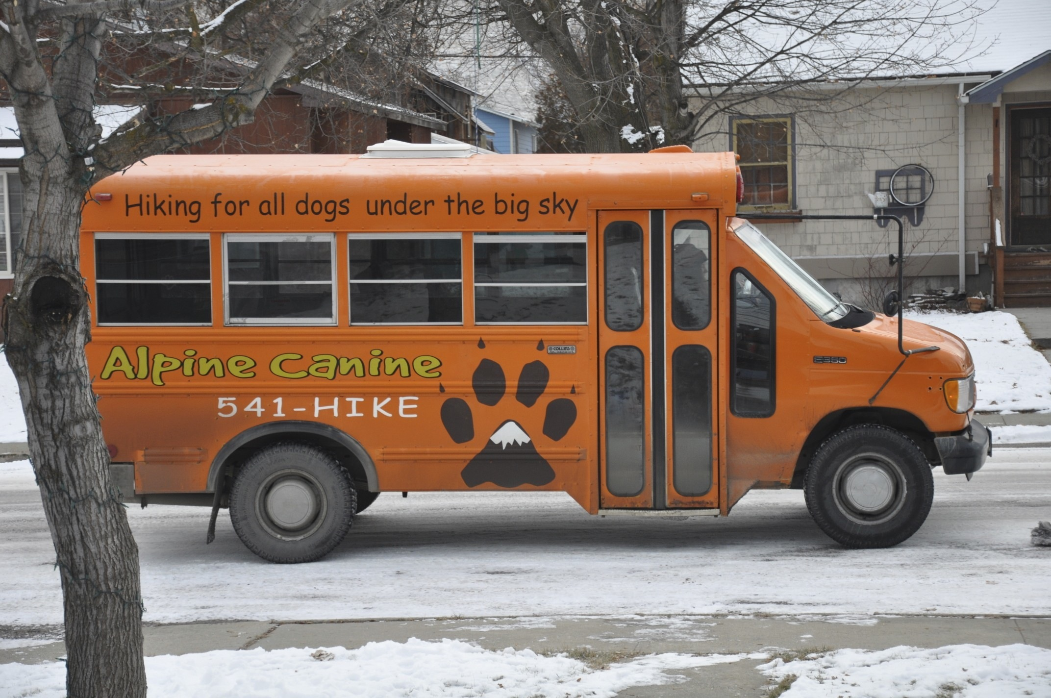 Alpine Canine Bus