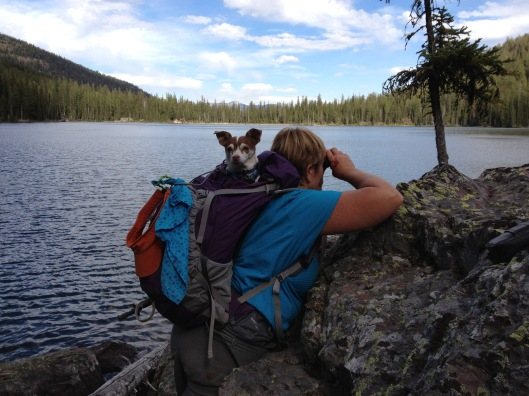 Totally comfortable in backpacks. This was a Montana hike several years ago